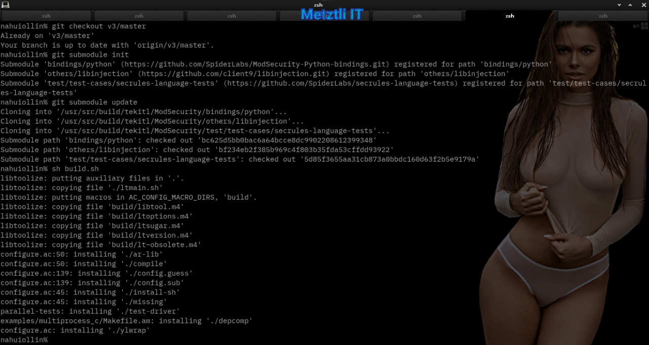 Nginx at Metztli IT: ModSecurity v3 module, Engine X v1.15.9, and libmodsecurity3 Connector, Integrated Hack.