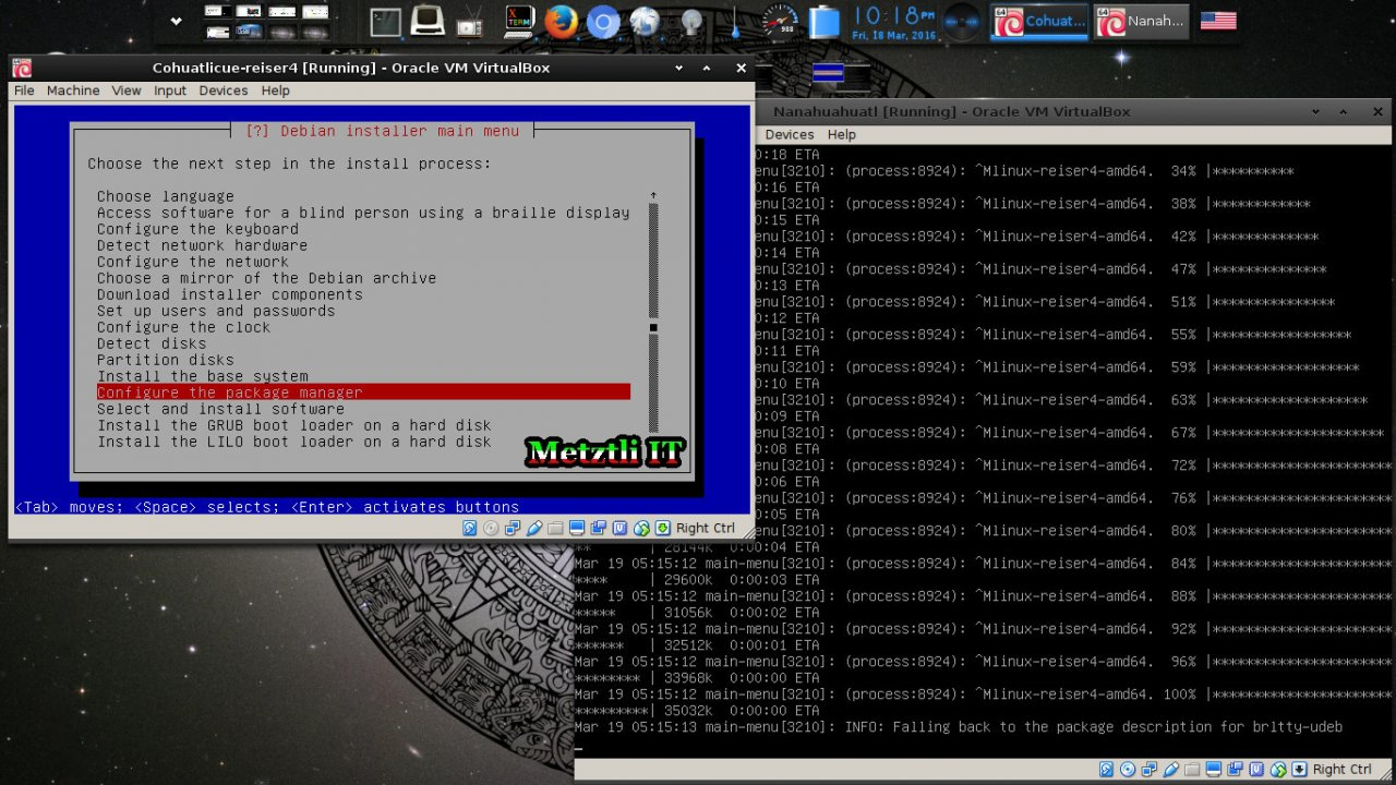 Selecting a Reiser4-patched Linux Kernel From Reiser4-enabled Debian-Installer (d-i) Menu