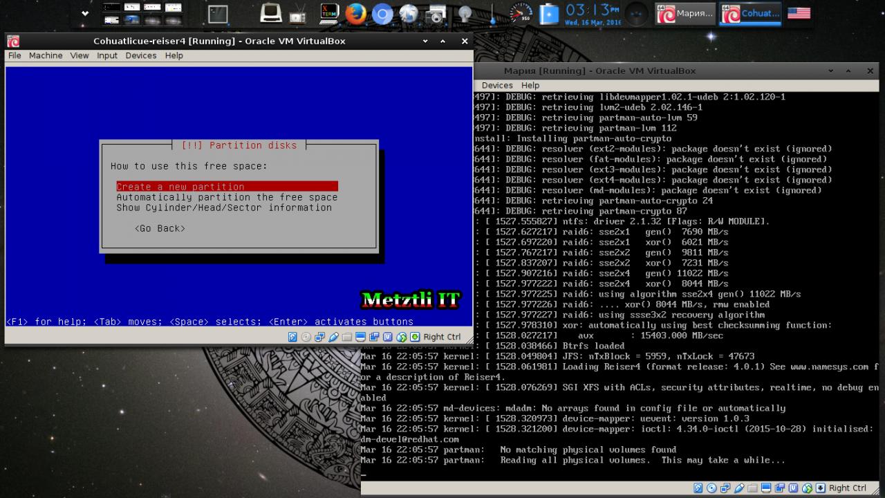 Мария: Reiser4 SFRN 4.0.1 Partitioning From Reiser4-enabled Debian-Installer (d-i) Menu