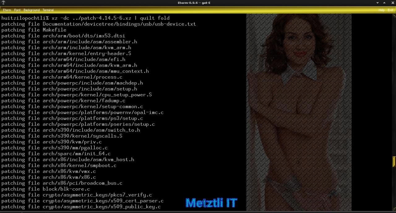 Building New Reiser4, Software Format Release Number 4.0.2, and Zstd Compression, Debian Stretch-Backports Kernel.