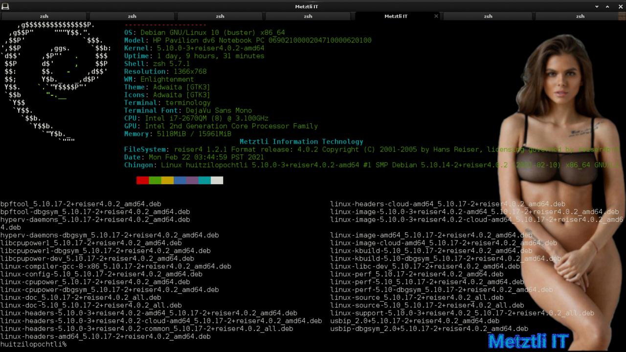 Reiser4 and Linux version Macuilli.Matlactli, i.e., 5.10