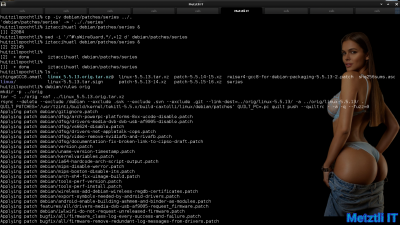 Exposing Hacks for ZSTD -compressed Metztli Reiser4 / Debian Buster bps Linux 5.5.caxtolli∙omome and initramfs